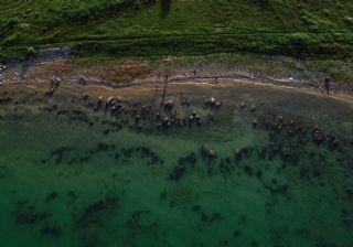 Van Gölü'nde su çekildi, binlerce yıllık mikrobiyalitler ortaya çıktı